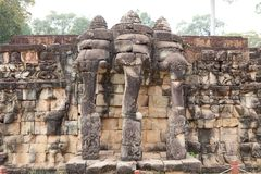 Taras słonie Zdjęcie Stock