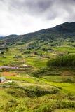 tarasowaci zieleni ryż pola w Ma Tra wiosce, Sa Pa, Wietnam Obraz Royalty Free
