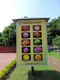 Tarasowaty ogród Chandigarh, India fotografia stock