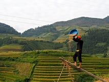 Tarasowaty Rice pole, Mu Cang Chai Wietnam Obrazy Royalty Free