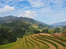 Tarasowaty Rice pole, Mu Cang Chai Wietnam Obraz Royalty Free