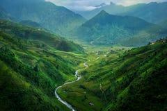 Tarasowaty ryżu pole w Mu Cang Chai, Wietnam zdjęcie stock
