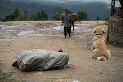 Tarasowaty ryżowy odpowiada, w Dazhai wiosce, Guangxi, Chiny Obraz Royalty Free