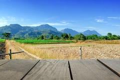 Tarasowy drewno i Piękna łąka dla natury bg Fotografia Royalty Free
