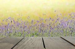 Tarasowy drewno i Piękna łąka dla natury tła Zdjęcie Stock