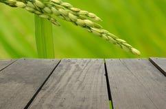 Tarasowy drewno i piękni irlandczyków ryż dla tła użycia Fotografia Stock