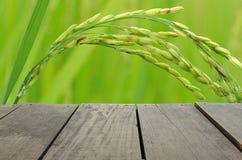 Tarasowy drewno i piękni irlandczyków ryż dla tła użycia Obrazy Royalty Free