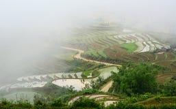 Tarasowy ryżu pole przy iryguje sezon w Sapa zdjęcia royalty free