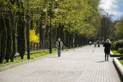 Tarasu Shevchenko park Miasto Ivano-Frankivsk, Ukraina Czerwiec 10, 2017 Zdjęcia Stock