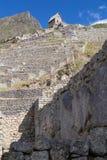 Tarasy i stara ruina w Machu Picchu mieście Incas w Peru Obrazy Stock
