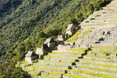 Tarasy Mach Picchu Fotografia Stock