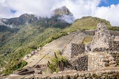 Tarasy przy Machu Picchu inka ruinami - Święta dolina, Peru Zdjęcia Stock