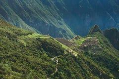 Tarasy w halnym Mach Picchu Obraz Royalty Free