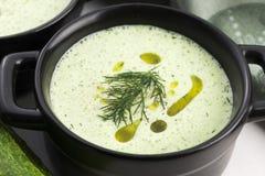 Tarator, bulgarian soup Royalty Free Stock Photos