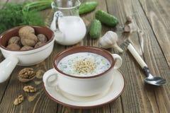 Tarator, bulgarian sour milk soup Royalty Free Stock Photography