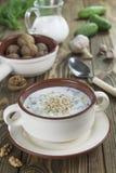Tarator, bulgarian sour milk soup Royalty Free Stock Photo