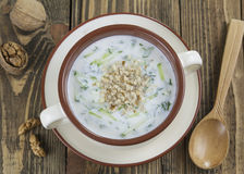 Tarator, bulgarian sour milk soup Stock Image