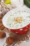 Tarator, bulgarian sour milk soup Royalty Free Stock Photo
