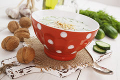 Tarator, bulgarian sour milk soup Stock Photography