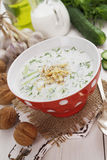 Tarator, bulgarian sour milk soup Stock Photos