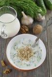 Tarator, bulgarian sour milk soup Stock Photo