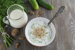 Tarator, bulgarian sour milk soup Royalty Free Stock Image