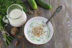 Tarator, bulgarian sour milk soup Royalty Free Stock Image