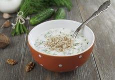 Tarator, bulgarian sour milk soup Stock Photos