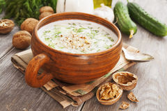Tarator, bulgarian sour milk soup Royalty Free Stock Photography
