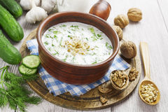 Tarator, bulgarian sour milk soup Royalty Free Stock Images