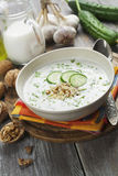 Tarator, bulgarian sour milk soup Stock Photo