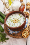 Tarator, bulgarian sour milk soup Royalty Free Stock Photos