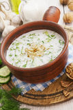 Tarator, bulgarian sour milk soup Stock Images