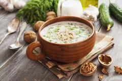 Tarator, bulgarian sour milk soup Stock Photography