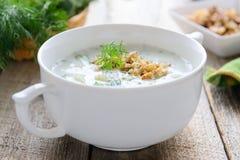 Tarator - traditionele Bulgaarse de zomer koude soep met komkommers, okkernoot en yoghurt stock foto's