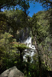 Tarawera Falls, New Zealand Royalty Free Stock Photography