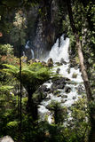 Tarawera Falls, New Zealand Royalty Free Stock Image