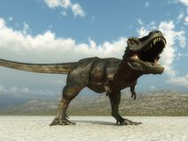 Tarbosaurus. A tarbosaurus, a tyrannosaurid of the cretaceous period, lets loose its terrible temper Stock Images