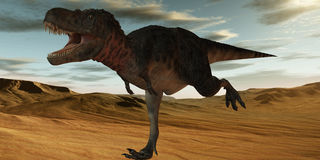 Tarbosaurus Bataar-3D Dinosaur Royalty Free Stock Image