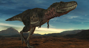 Tarbosaurus Bataar-3D Dinosaur Royalty Free Stock Photos