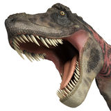 Tarbosaurus big bite. The dinosaur tarbosaurus is a cgi genareted  very useful for any illustration Stock Photos