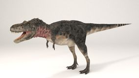 Tarbosaurus-Dinosaur stock photography