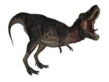 Tarbosaurus dinosaur - 3D render Royalty Free Stock Photography