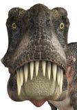 Tarbosaurus font face illustration stock