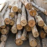 Tarcicy drewno wypiętrzający wpólnie Zdjęcie Royalty Free
