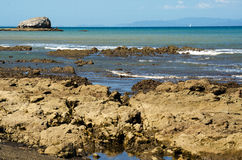 Tarcoles by - Costa Rica royaltyfri fotografi