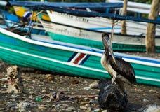 Tarcoles village - Costa Rica Stock Images