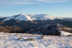 Tarcu Mountain Stock Images