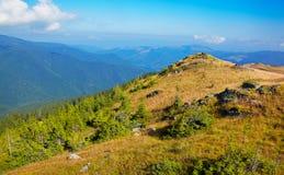Tarcu Mountains Stock Images