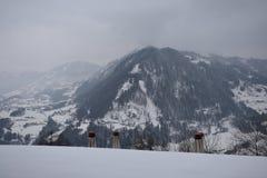 Tarde alpina imagenes de archivo